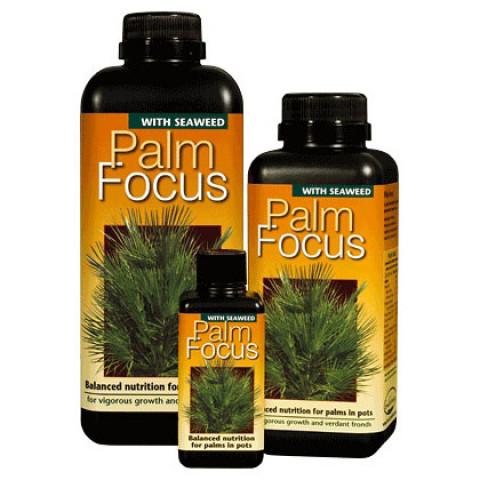 Удобрение для пальм Palm Focus