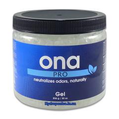 Нейтрализатор запаха Гель ONA PRO 856 гр