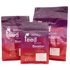 Стимулятор для плотных соцветий PK Booster Powder Feeding