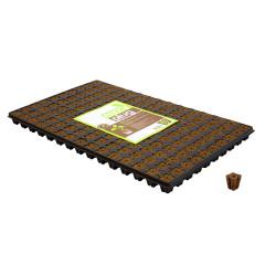 Eazy Plug кубики для проращивания 150 шт