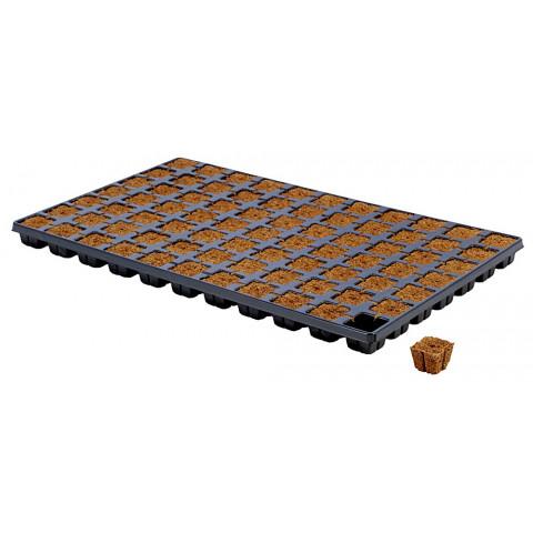 Eazy Plug кубики для проращивания 77 шт