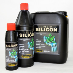 Growth Technology Liquid Silicon Жидкий кремний
